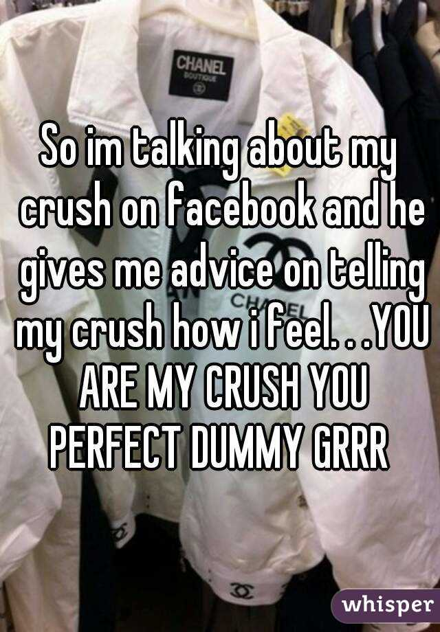 So im talking about my crush on facebook and he gives me advice on telling my crush how i feel. . .YOU ARE MY CRUSH YOU PERFECT DUMMY GRRR