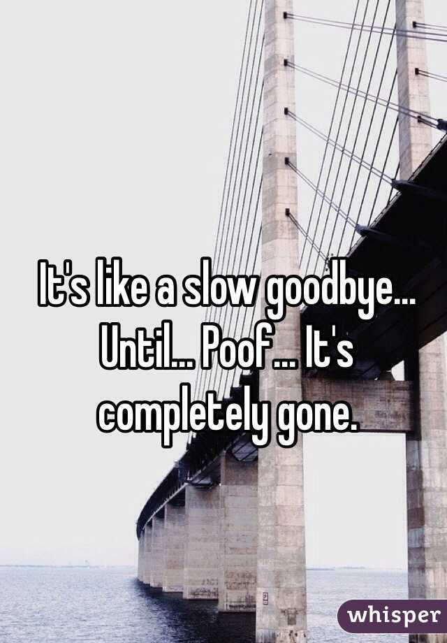 It's like a slow goodbye... Until... Poof... It's completely gone.
