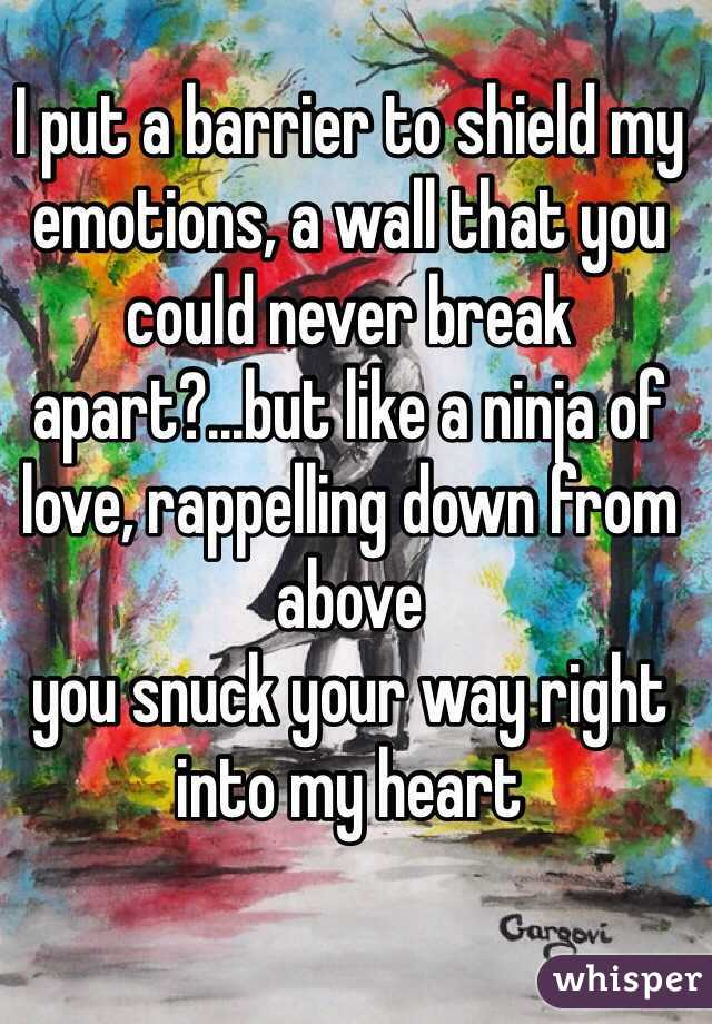 I put a barrier to shield my emotions, a wall that you could never break apart?...but like a ninja of love, rappelling down from above you snuck your way right into my heart