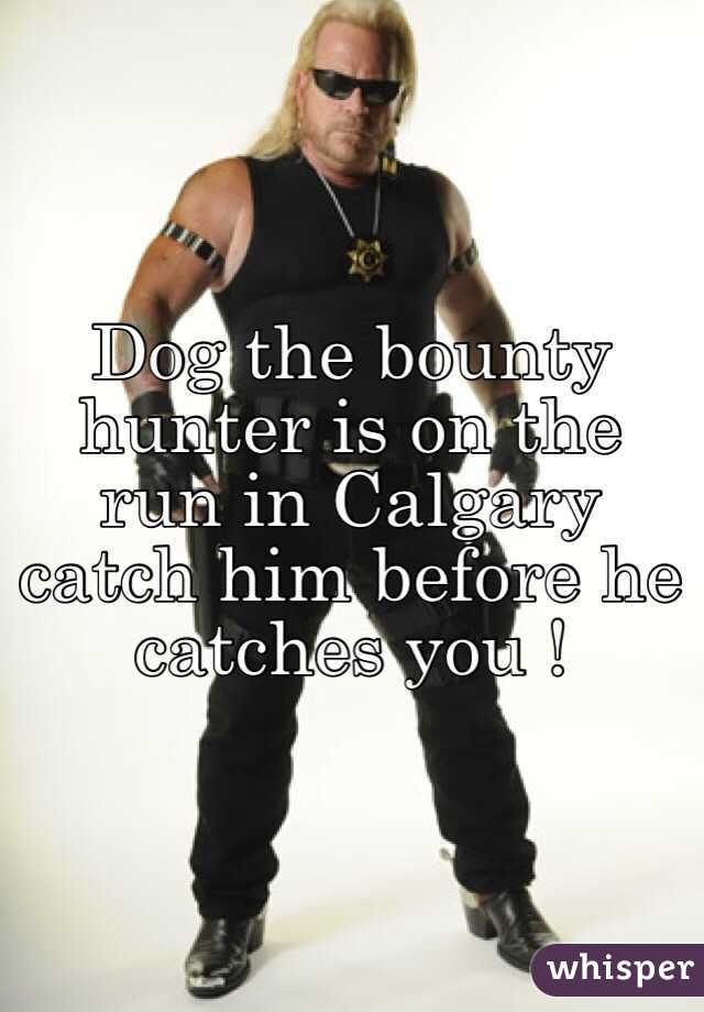 Dog the bounty hunter is on the run in Calgary catch him before he catches you !