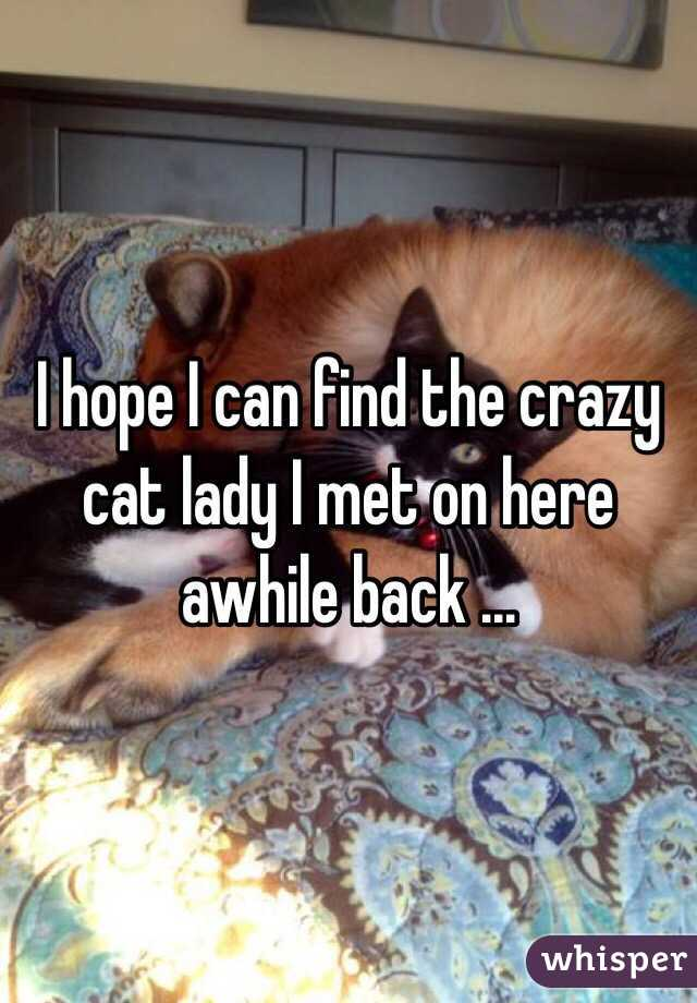 I hope I can find the crazy cat lady I met on here awhile back ...