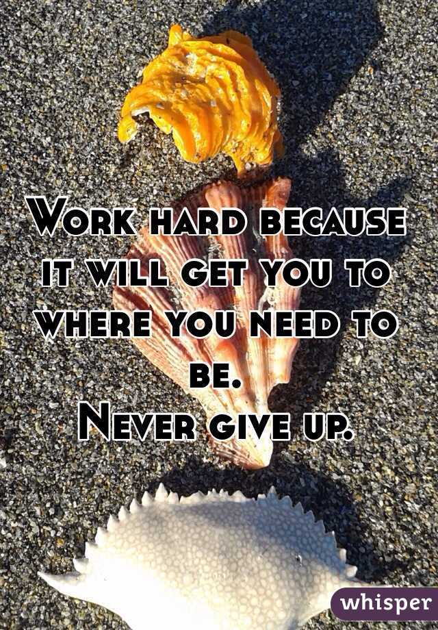 Work hard because it will get you to where you need to be.  Never give up.