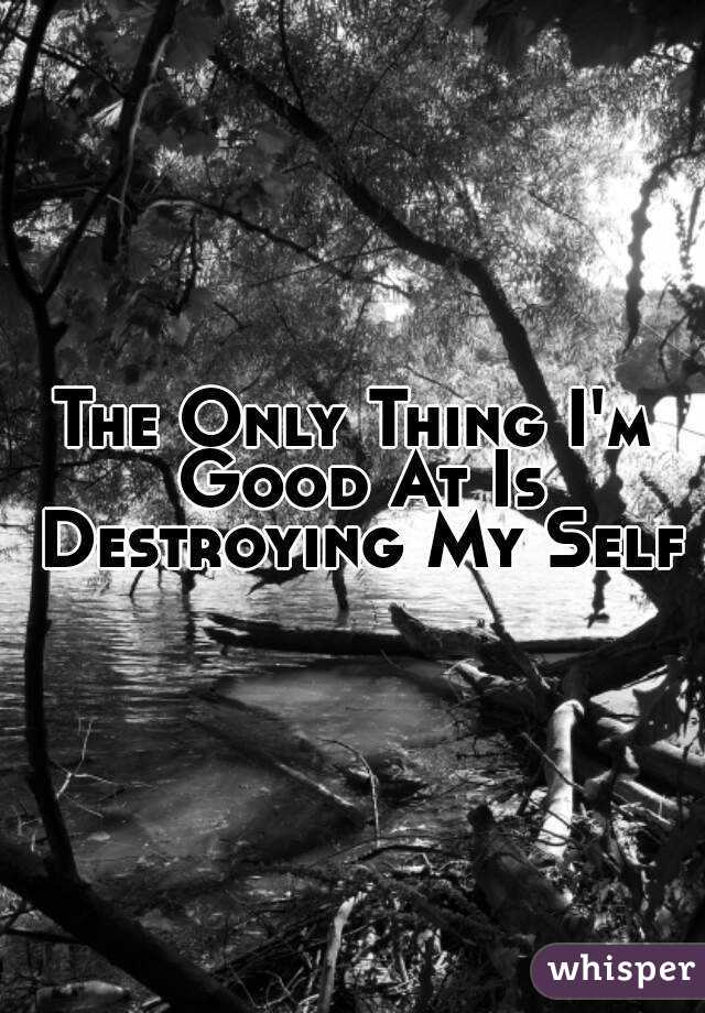 The Only Thing I'm Good At Is Destroying My Self