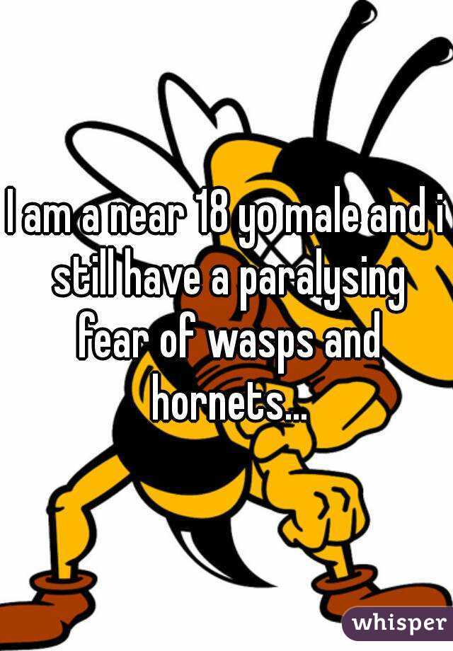 I am a near 18 yo male and i still have a paralysing fear of wasps and hornets...