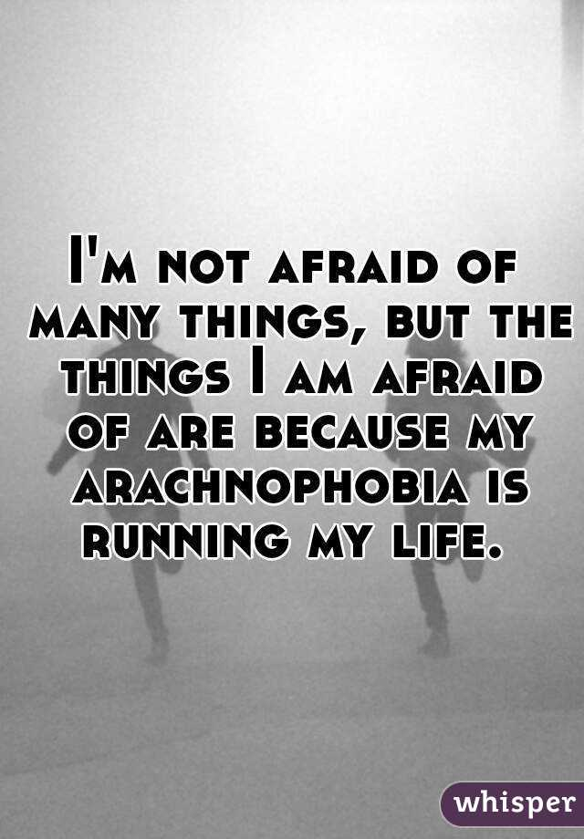 I'm not afraid of many things, but the things I am afraid of are because my arachnophobia is running my life.