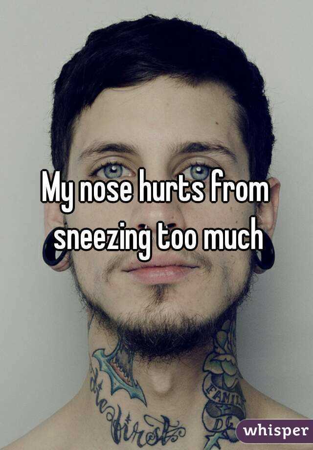 My Nose Hurts From Sneezing Too Much