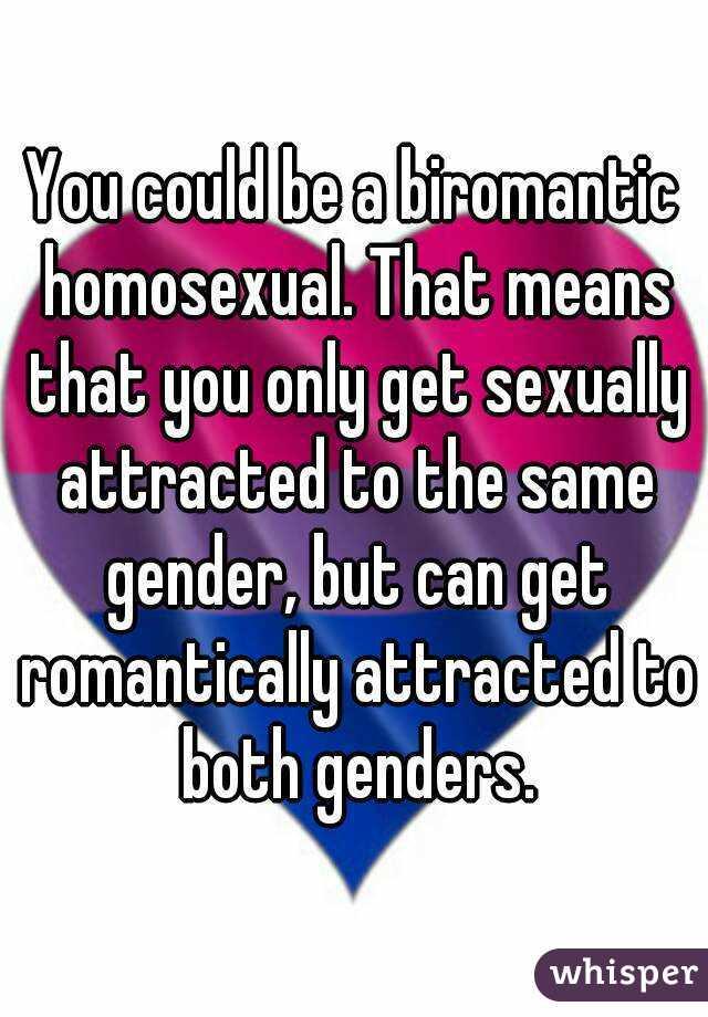 Biromantic homosexual