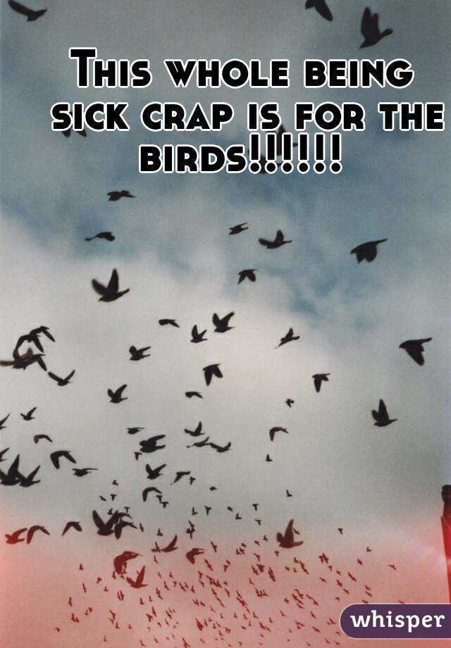 This whole being sick crap is for the birds!!!!!!