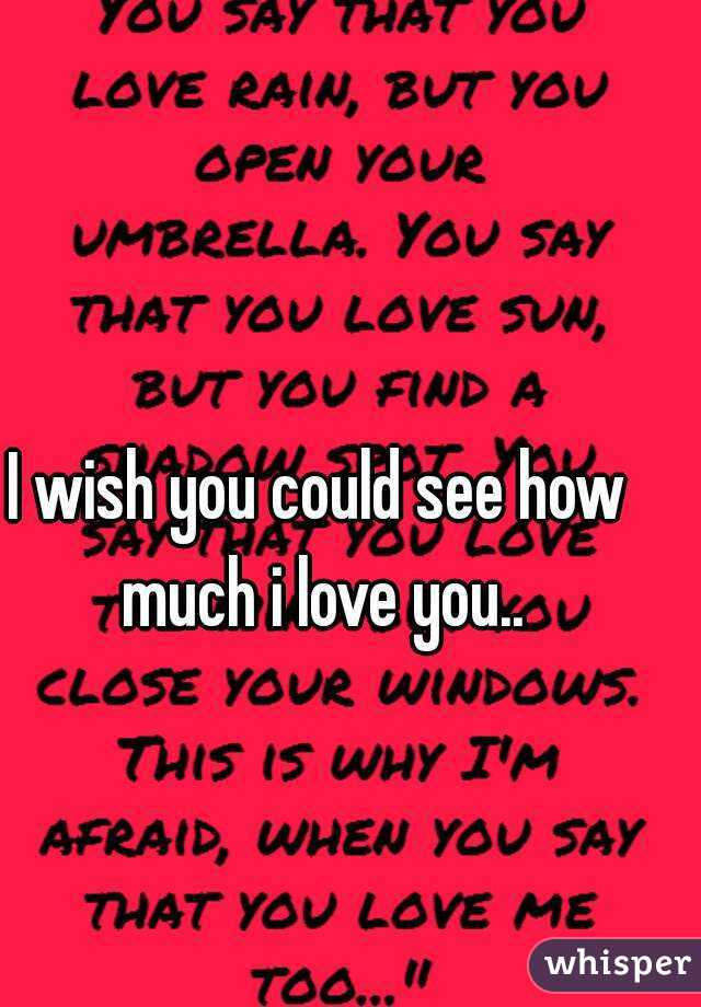 I wish you could see how much i love you..