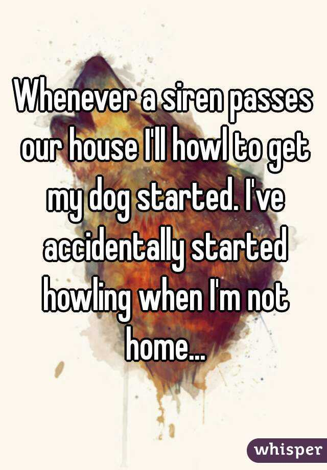 Whenever a siren passes our house I'll howl to get my dog started. I've accidentally started howling when I'm not home...