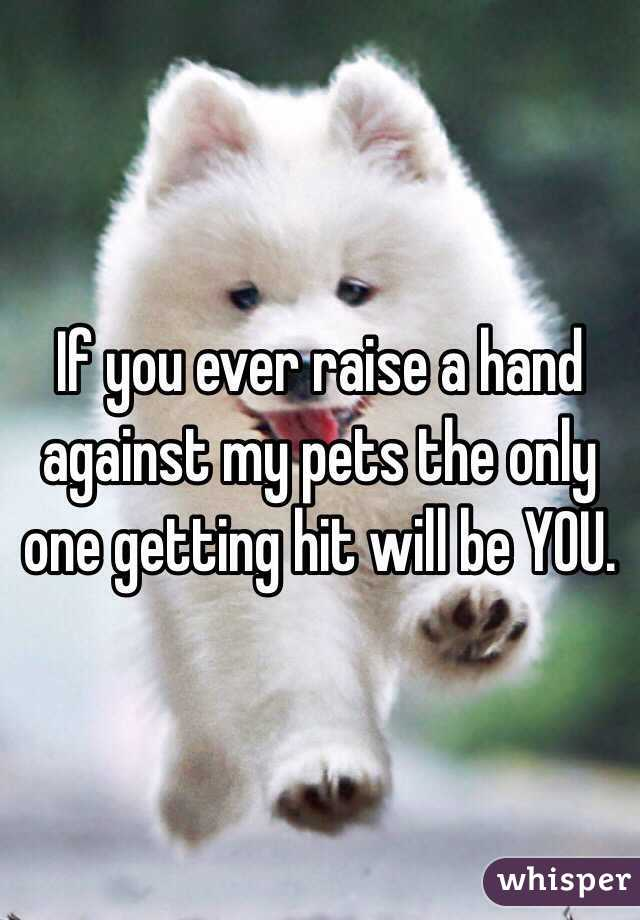 If you ever raise a hand against my pets the only one getting hit will be YOU.