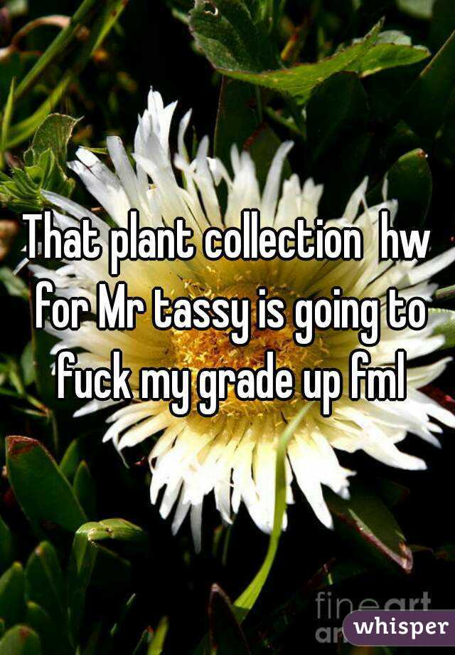 That plant collection  hw for Mr tassy is going to fuck my grade up fml