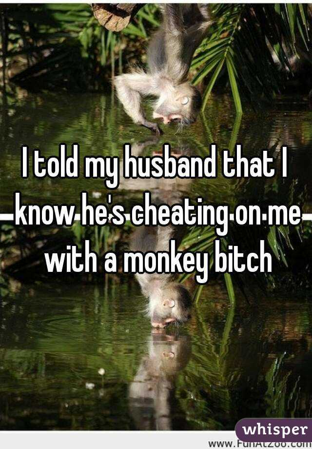 I told my husband that I know he's cheating on me with a monkey bitch