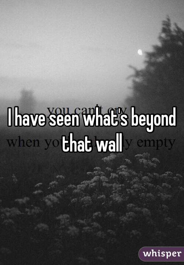 I have seen what's beyond that wall