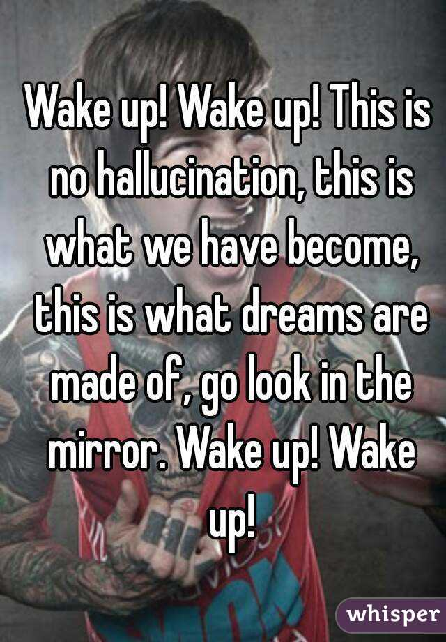 Wake up! Wake up! This is no hallucination, this is what we have become, this is what dreams are made of, go look in the mirror. Wake up! Wake up!