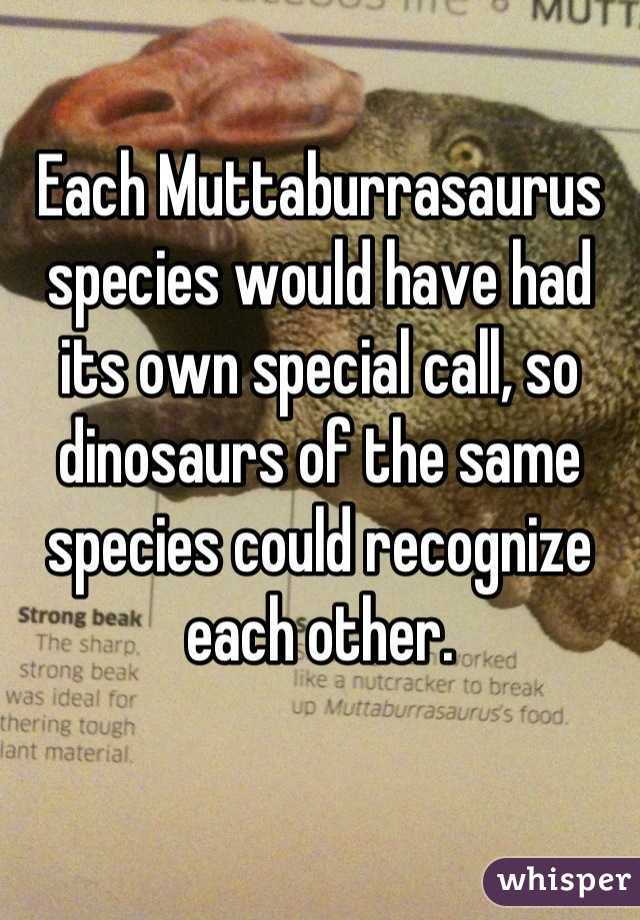 Each Muttaburrasaurus species would have had its own special call, so dinosaurs of the same species could recognize each other.