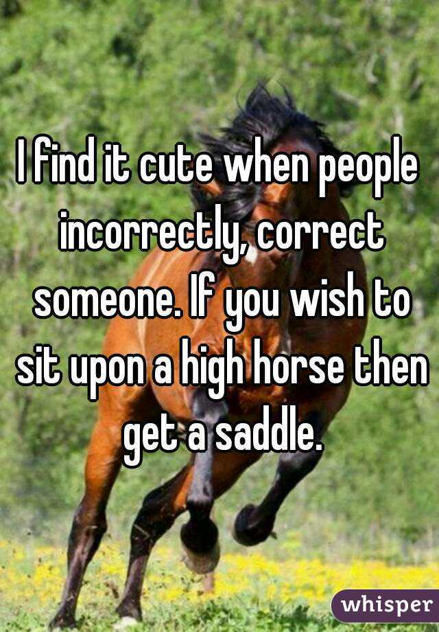 I find it cute when people incorrectly, correct someone. If you wish to sit upon a high horse then get a saddle.