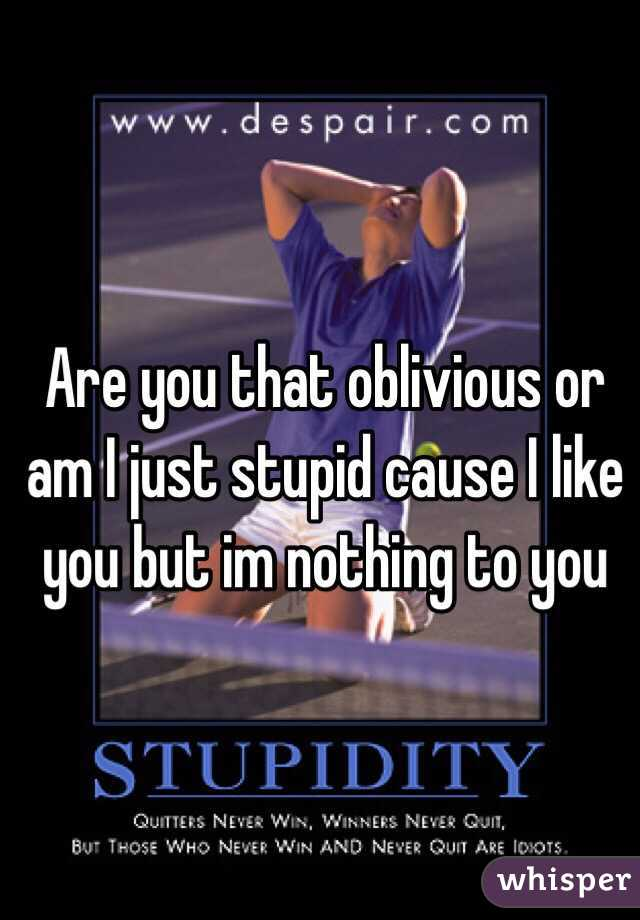 Are you that oblivious or am I just stupid cause I like you but im nothing to you