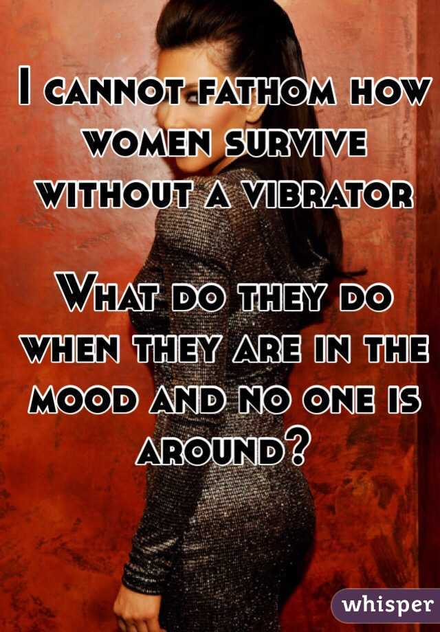 I cannot fathom how women survive without a vibrator   What do they do when they are in the mood and no one is around?