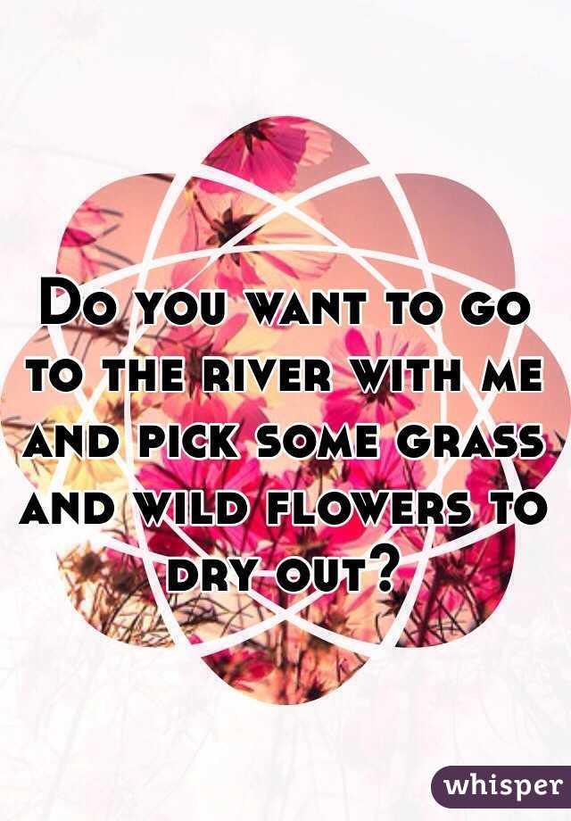 Do you want to go to the river with me and pick some grass and wild flowers to dry out?