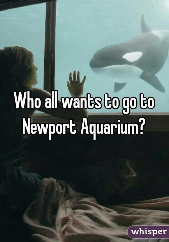 Who all wants to go to Newport Aquarium?