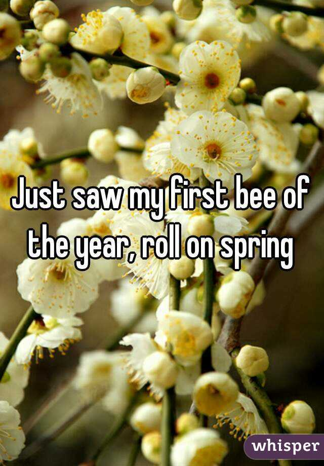 Just saw my first bee of the year, roll on spring
