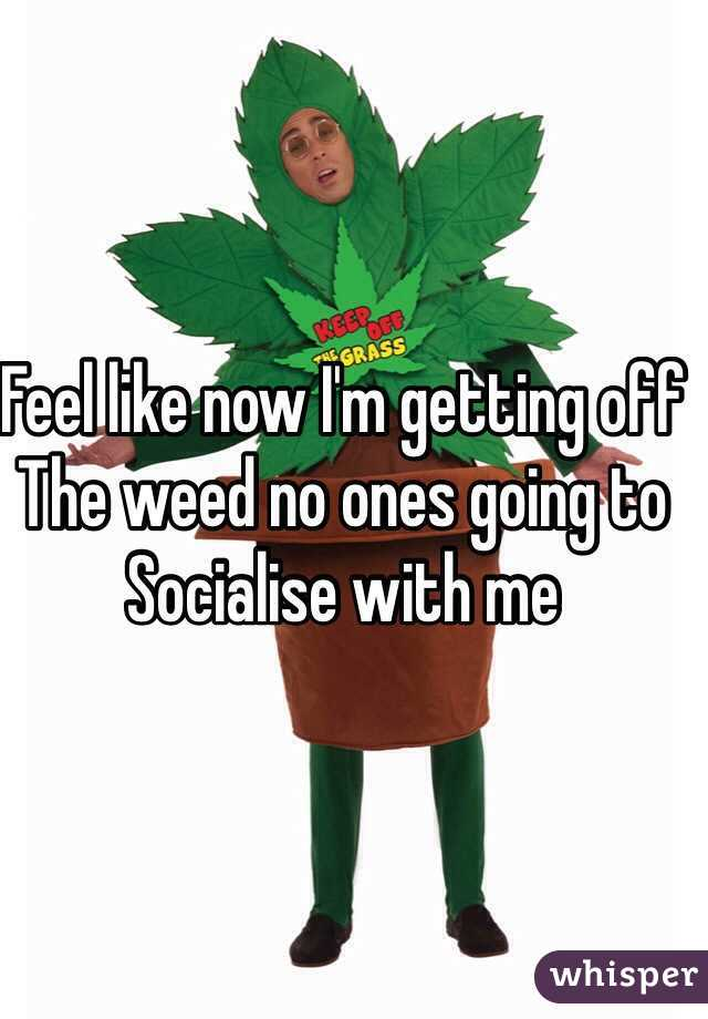 Feel like now I'm getting off The weed no ones going to  Socialise with me