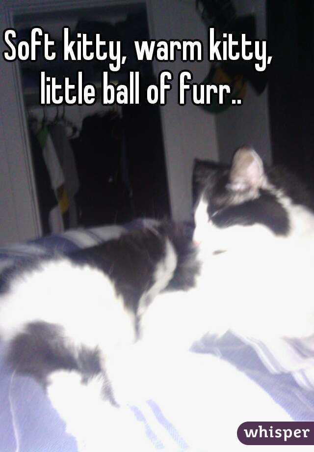 Soft kitty, warm kitty, little ball of furr..