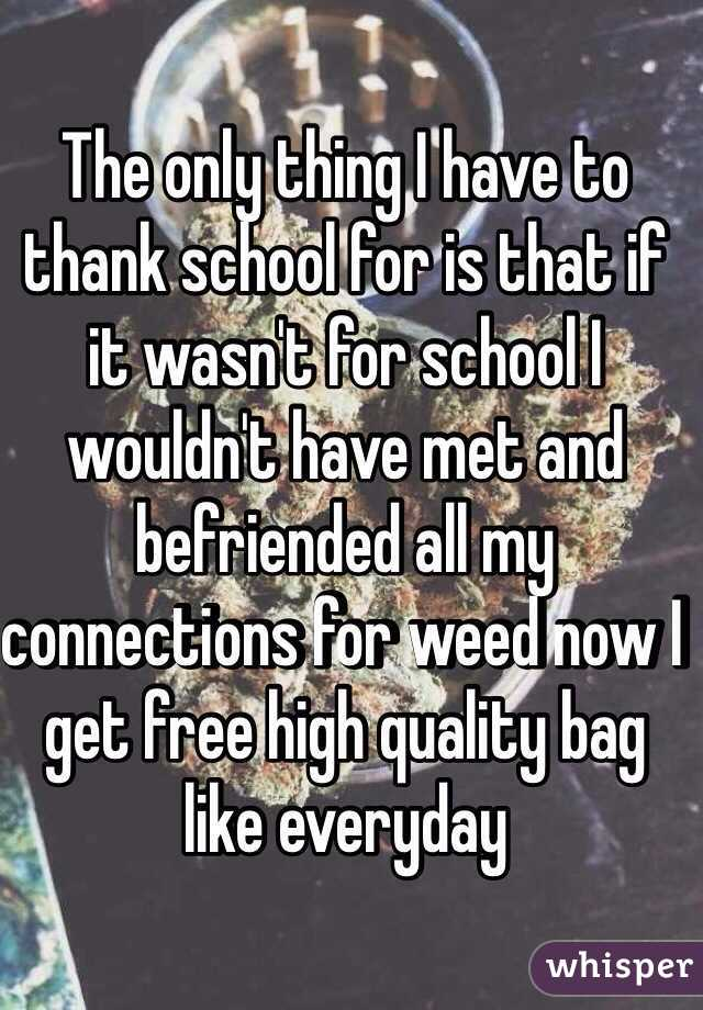 The only thing I have to thank school for is that if it wasn't for school I wouldn't have met and befriended all my connections for weed now I get free high quality bag like everyday