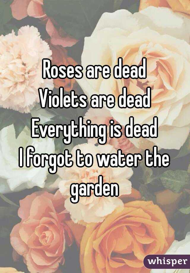 Roses are dead Violets are dead Everything is dead I forgot to water the garden