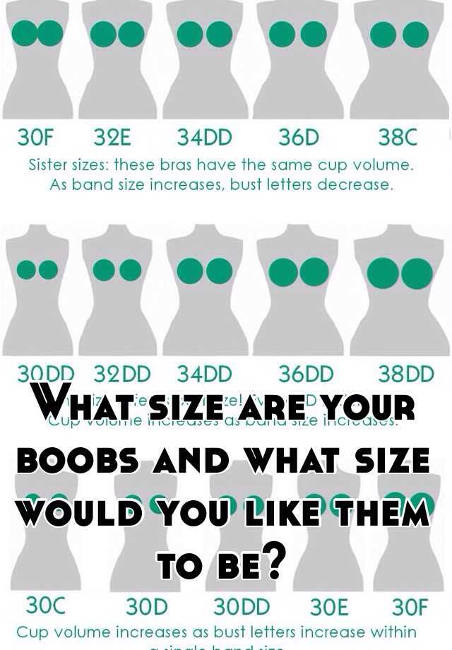 What size are your boobs and what size would you like them ... C Cup Breast Vs D Cup Breast