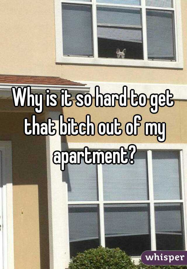 Why is it so hard to get that bitch out of my apartment?