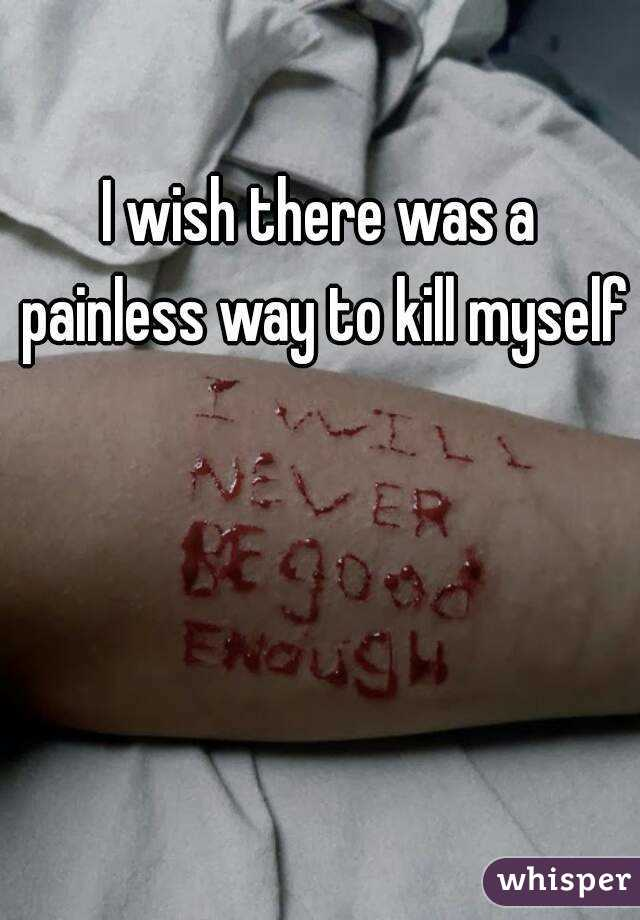 I wish there was a painless way to kill myself