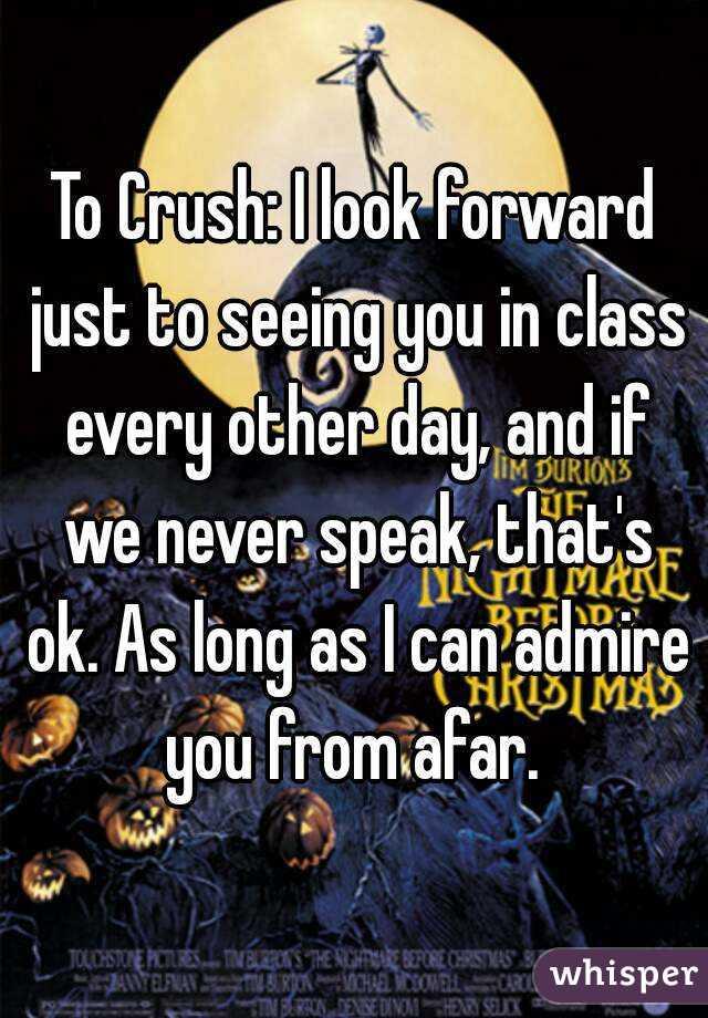 Crush Day Seeing