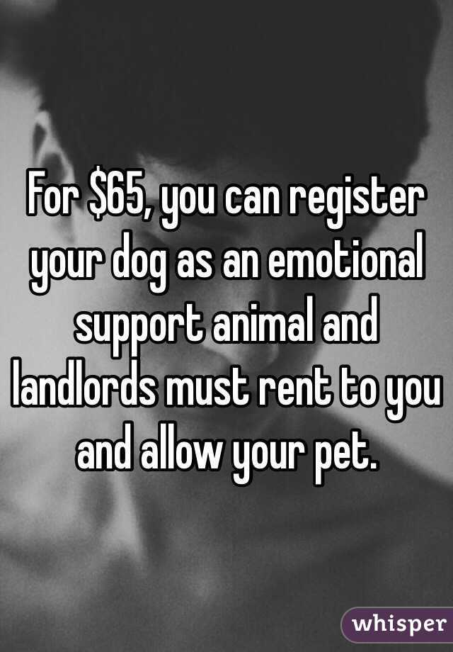 For $65, you can register your dog as an emotional support animal and landlords must rent to you and allow your pet.