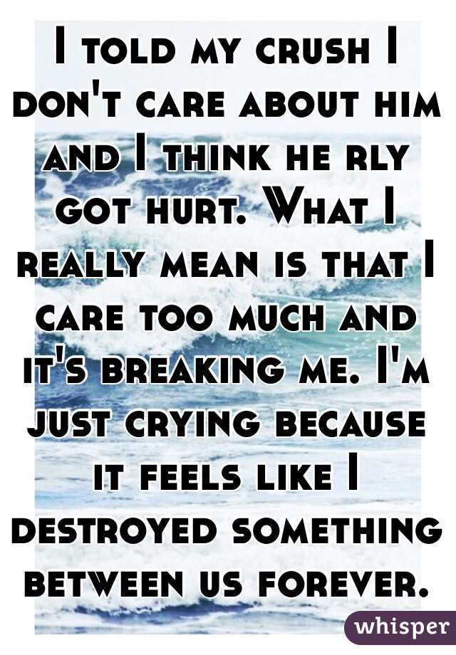 I told my crush I don't care about him and I think he rly got hurt. What I really mean is that I care too much and it's breaking me. I'm just crying because it feels like I destroyed something between us forever.