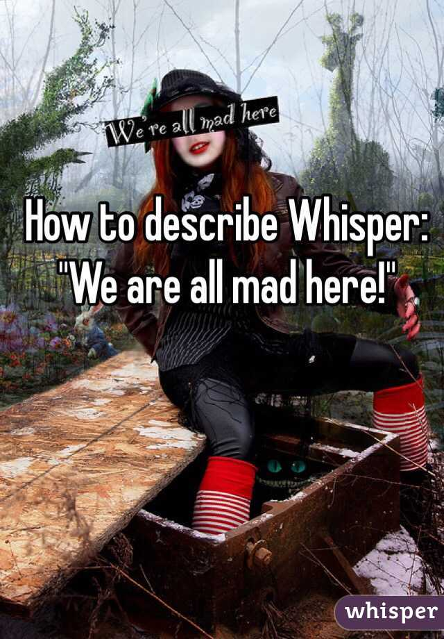 "How to describe Whisper: ""We are all mad here!"""