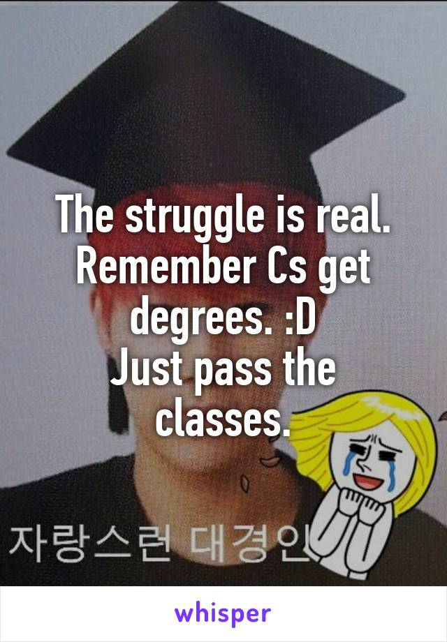 the struggle is real remember cs get degrees d just pass the classes
