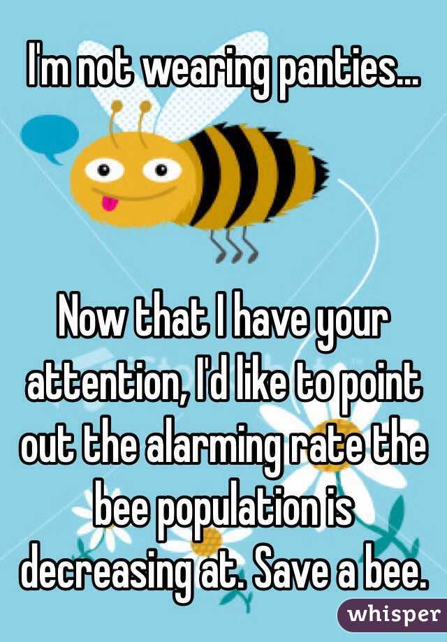 I'm not wearing panties...    Now that I have your attention, I'd like to point out the alarming rate the bee population is decreasing at. Save a bee.