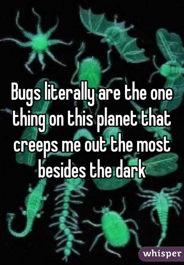 Bugs literally are the one thing on this planet that creeps me out the most besides the dark