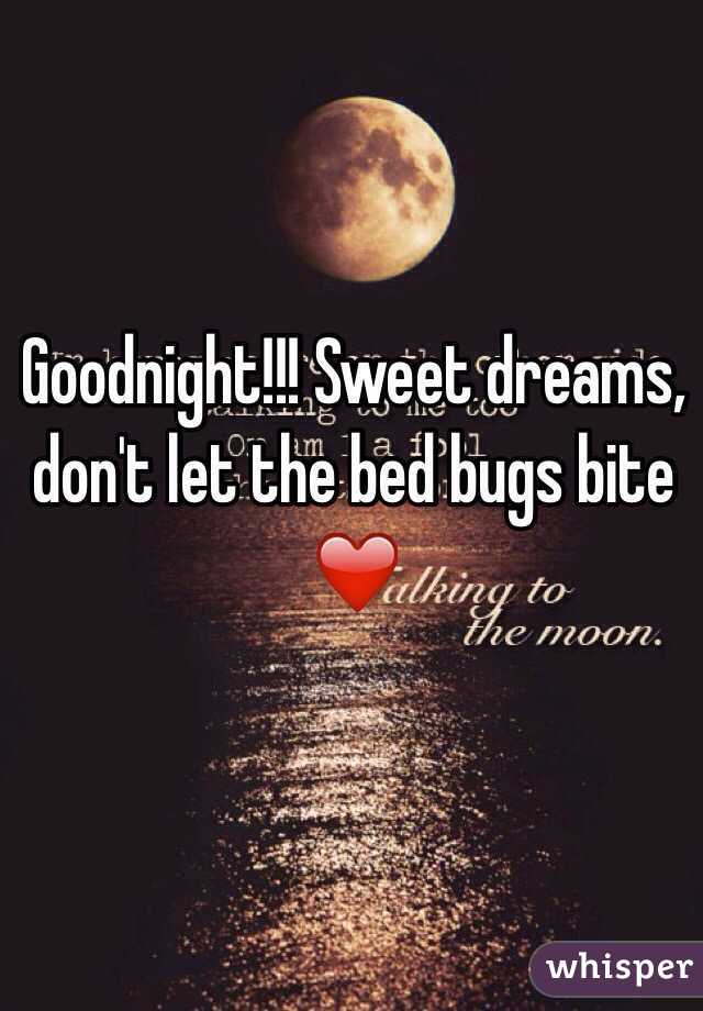 Sweet Dreams Dont Let The Bed Bugs Bite