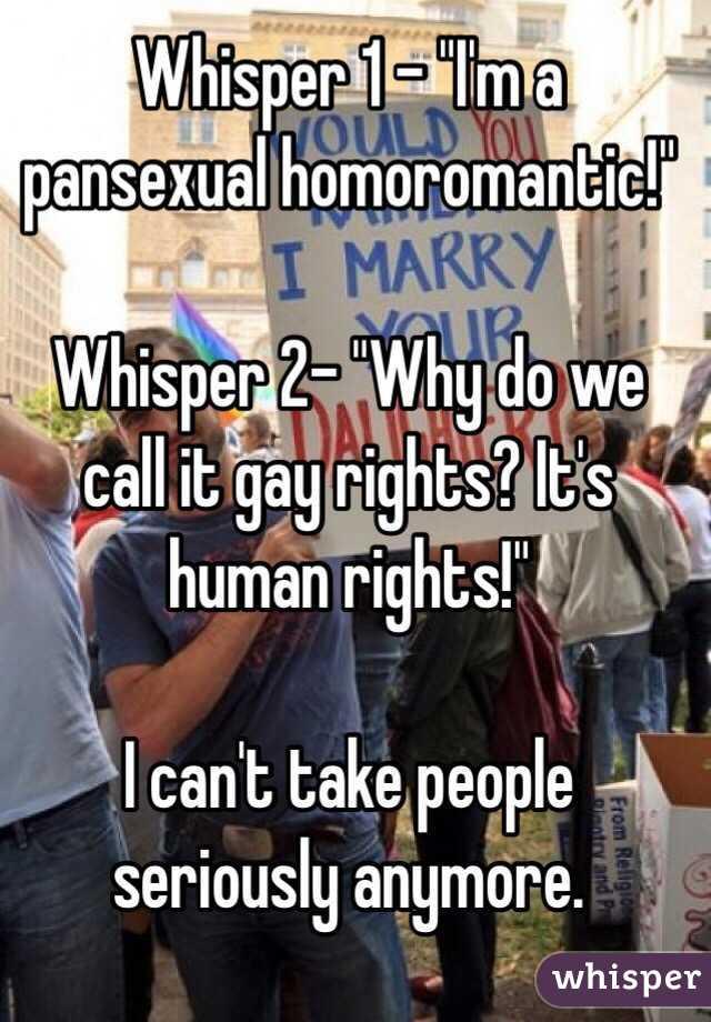 Homoromantic pansexual