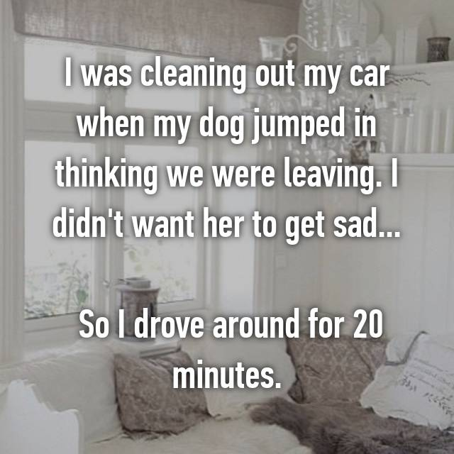 I was cleaning out my car when my dog jumped in thinking we were leaving. I didn't want her to get sad...   So I drove around for 20 minutes.