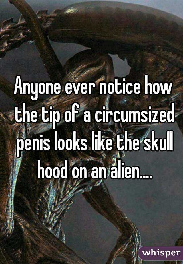 Anyone ever notice how the tip of a circumsized penis looks like the skull hood on an alien....
