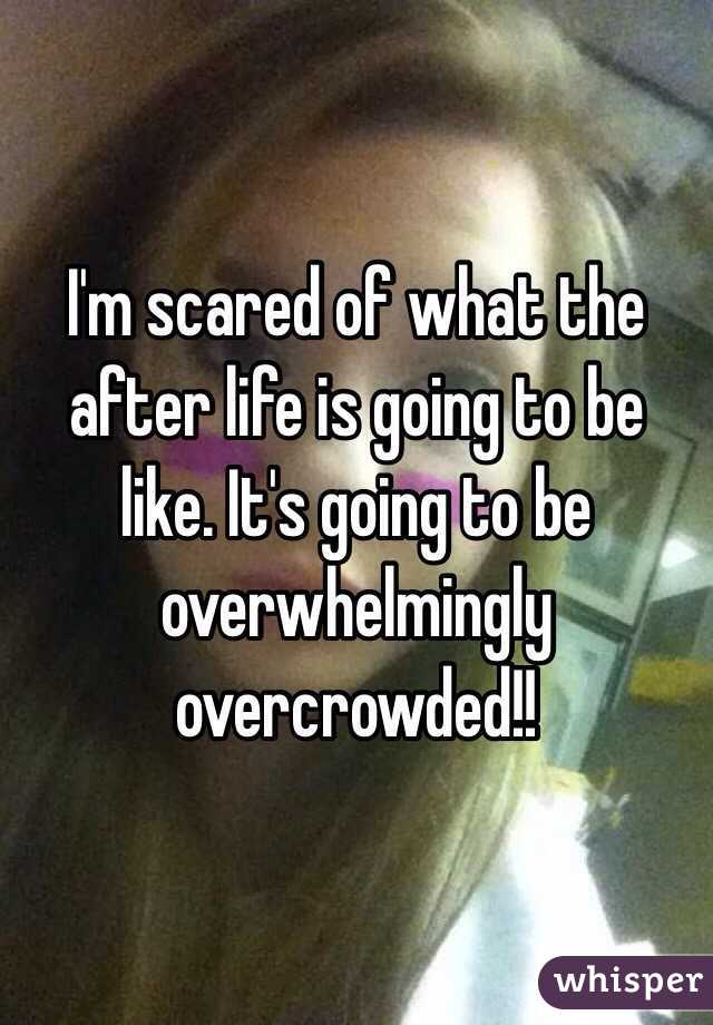 I'm scared of what the after life is going to be like. It's going to be overwhelmingly overcrowded!!