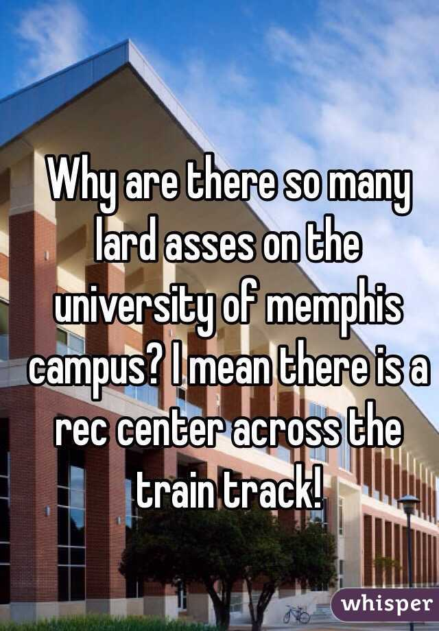Why are there so many lard asses on the university of memphis campus? I mean there is a rec center across the train track!