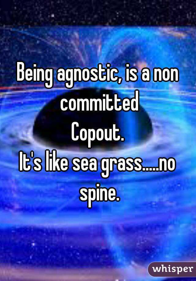Being agnostic, is a non committed Copout. It's like sea grass.....no spine.