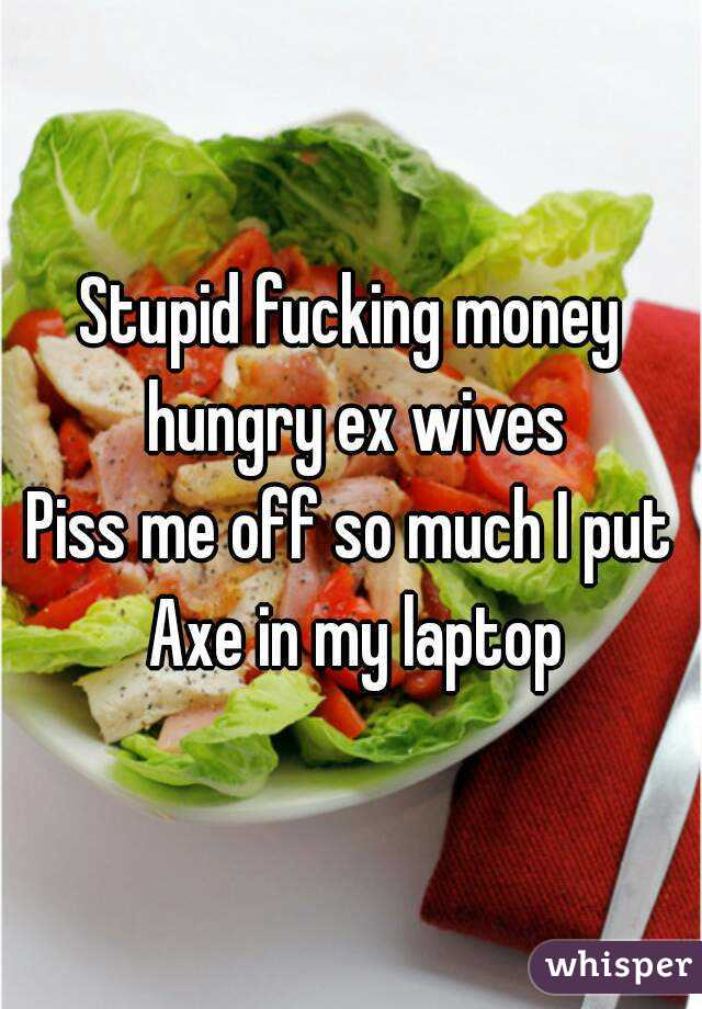 Stupid fucking money hungry ex wives Piss me off so much I put Axe in my laptop