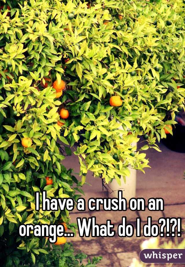 I have a crush on an orange... What do I do?!?!