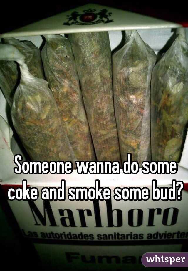 Someone wanna do some coke and smoke some bud?